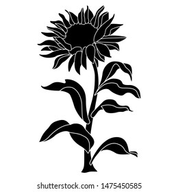 Sunflower Silhouette Images Stock Photos Vectors Shutterstock Free sunflower silhouette vector download in ai, svg, eps and cdr. https www shutterstock com image vector isolated vector illustration sunflower plant black 1475450585
