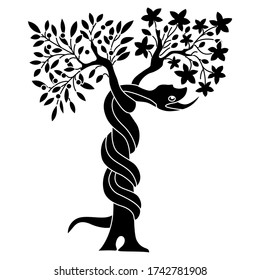 Isolated vector illustration. Tree of the knowledge of good and evil. Serpent snake in Eden garden. Biblical Christian symbol. Apple fruit of sin. Black and white silhouette.