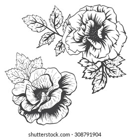 isolated vector object, set flower pattern Rose, leaves, drawing hands rose flower, black line