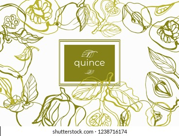 Isolated vector set quince, fruit, quince fruits, twigs with leaves on a white background. Lemon color. Circuit. Vector template design. Hand drawn fruits illustrations.Exotic fruits.
