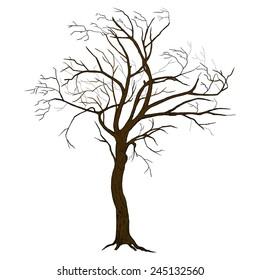 Isolated vector tree illustration with detailed drawing bark for large wide-format printing