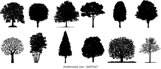 Isolated vector trees