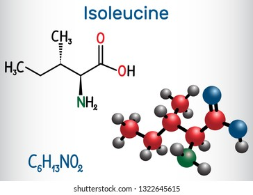 Isoleucine (L- isoleucine , Ile, I) amino acid molecule. It is used in the biosynthesis of proteins. Structural chemical formula and molecule model. Vector illustration
