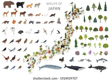 Isometric 3d design of Japan wildlife. Animals, birds and plants constructor elements isolated on white set. Build your own geography infographics collection. Vector illustration