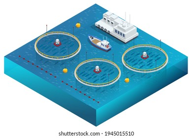 Isometric Fish Farm. Producing Trout and Salmon, Carp, Tilapia, and Catfish. Fish farming or pisciculture involves raising fish commercially in tanks or enclosures such as fish ponds for food.