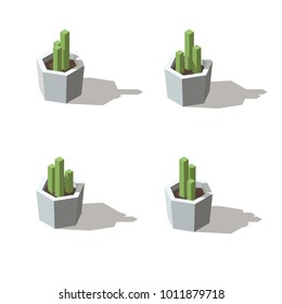 Isometric low poly potted plant. Indoor, office and house plant.