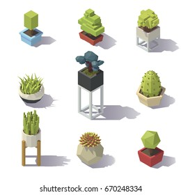 Isometric Plants on white background. Vector low poly illustration.