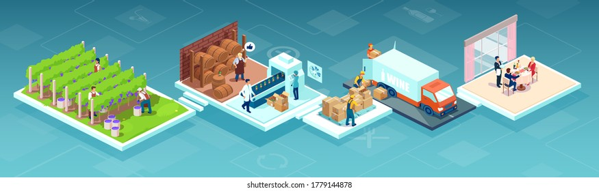Isometric vector of a wine production process, production beverage from grape, chain from a vineyards farm through factory to consumer on a supermarket shelves or restaurant