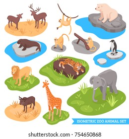 Isometric zoo decorative icons set of animals living in african arctic and asian wilderness isolated vector illustration
