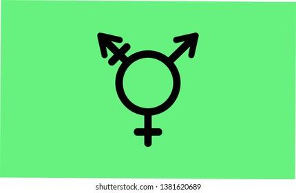 Israel Transgender and Genderqueer pride flag - one of the sexual minority of LGBT community