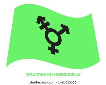 Israeli Transgender & Genderqueer Flag Waving Vector Illustration Designed with Correct Color Scheme.