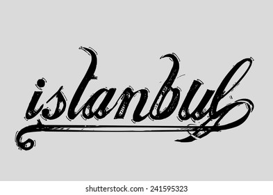 istanbul city graphic design vector art
