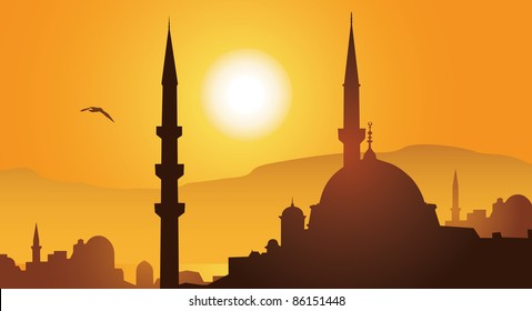 Istanbul city and mosque in sunset vector image