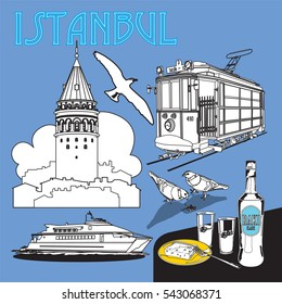 istanbul vector. tram seagull