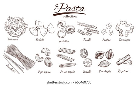 Italian Pasta set. Different types of pasta. Vector hand drawn illustration. Isolated objects on white. Sketch style