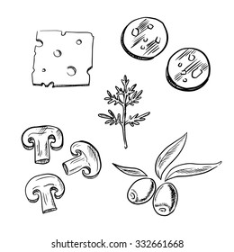 Italian pizza topping ingredients sketch icons with slices of cheese, salami sausage, mushroom, olive fruits and fresh dill
