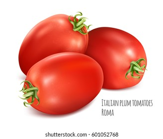 Italian plum tomatoes Roma. Vector illustration of tomato with green stem.