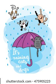 """It's raining cats and dogs"" autumn card. Falling raindrops and umbrella with cats and dogs. Bright autumn postcard. Vector illustration."