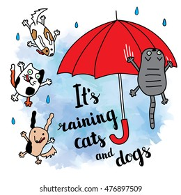 Raining Cats And Dogs Images Stock Photos Vectors Shutterstock
