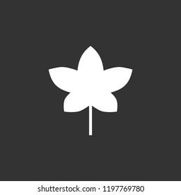 Ivy vector icon