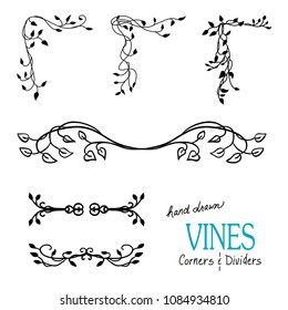 Ivy and vine design elements with flourishes curls and swirls for border corners and underline dividers and are hand drawn vector illustrations for wedding and Victorian decorations.