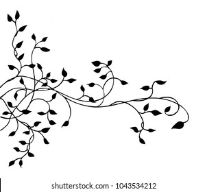 ivy vine silhouette vector; elegant decorative border or corner design element of leaves in pretty layout