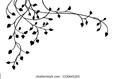 ivy vine silhouette vector, elegant black floral decorative border or corner design element of leaves in pretty layout, wedding invitation decoration isolated on white background