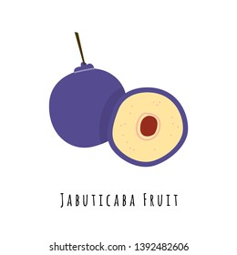 Jabuticaba fruit flat vector illustration. Cartoon slices of exotic, tropical fresh fruit. Clipart with typography. Isolated icon for healthy cooking menu, logo design element
