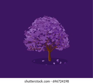 Jacaranda Tree in Full Bloom - Dark Background