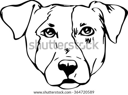 Jack Russell Terrier Dog Hand Drawn Stock Vector Royalty Free