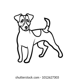 Jack Russell Terrier dog - isolated vector illustration