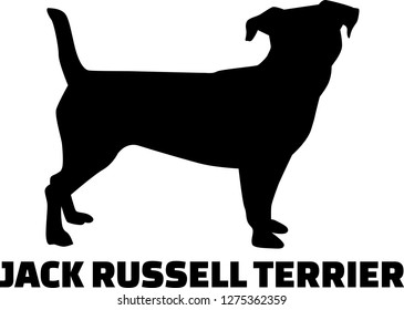 Jack Russell Terrier silhouette in black and white