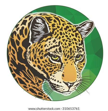 Attractive Jaguar Color Circle