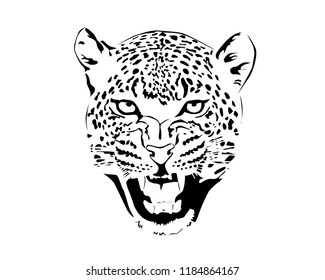 Jaguar head in black and white.