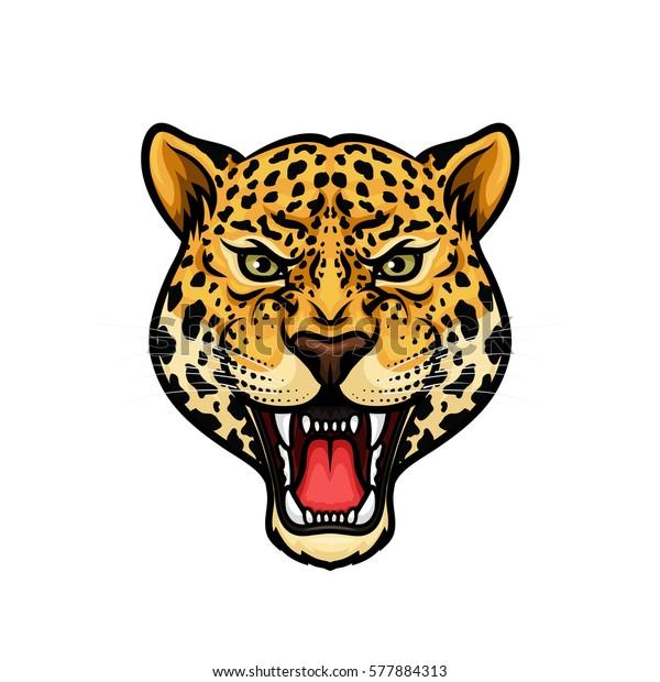 Vetor Stock De Jaguar Cabeca Isolado Mascote Dos Desenhos Livre