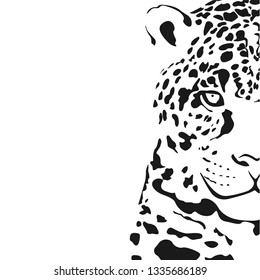 Jaguar head on a white background. Black and white vector illustration.