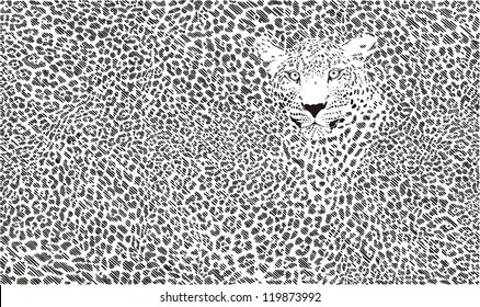 jaguar skin background illustration formed small flats