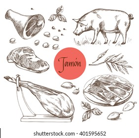 Jamon set. Black Iberian Pig, Jamon, Meat, beef dinner, raw steak, spice market  isolated. Vector illustration in Vintage engraving style. Perfect for menu illustration, label or sticker image.