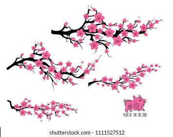 Japan cherry blossom branching tree. Japanese invitation card with asian blossoming plum branch. Year of the pig