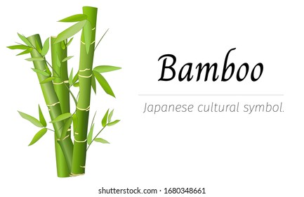 Japanese banner for text with bamboo. Vector illustration on a white background.