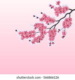 фотообои Japanese cherry, sakura. Lush branches dark pink cherry blossom close-up. Cut out of cardboard. Vector illustration