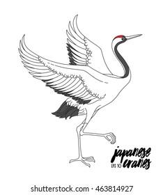 japanese dancing cranes vector set traditional stock vector royalty Sandhill Crane Drawing japanese dancing crane vector illustration with traditional motives