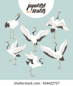 Japanese dancing cranes. Vector set with traditional motives.