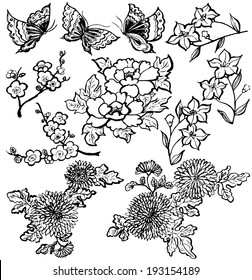 Japanese flowers. brushstroke illustrations.