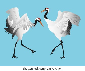Japanese red-crowned crane dancing, standing in different poses isolated on white background set, vector illustration