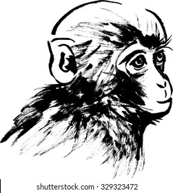 Japanese style illustrations of Monkey
