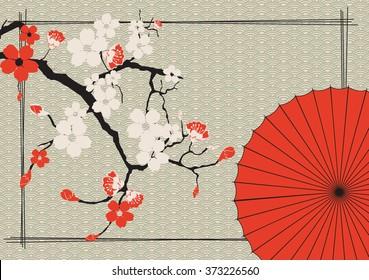 Japanese umbrella and Japanese cherry - Sakura