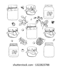 A jar of honey, strawberry jam in a glass jar. Berries. Vector colored food sketches on white background.