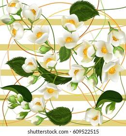 Jasmin Fleur Stock Vectors Images Vector Art Shutterstock