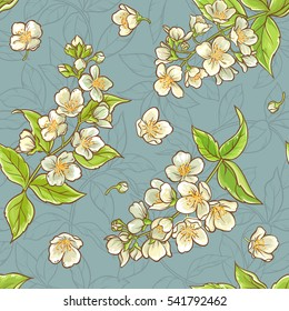 jasmine seamless pattern